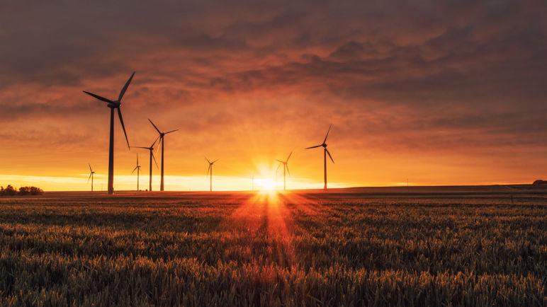 La economía circular como pilar estratégico